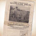1929 Seed Catalog